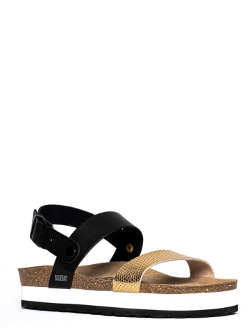 "Bluebay Leren sandalen ""Dunedin"" zwart/goudkleurig"