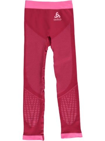 "Odlo Funktionsunterhose ""Performance"" in Pink"