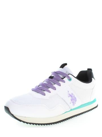 "U.S. Polo Assn. Sneakers ""Teva 3"" in Weiß"