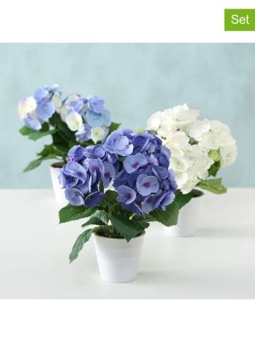 Boltze Dekoracyjne rośliny (3 szt.) - wys. 30 x Ø 25 cm