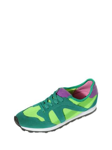 Colors of California Sneakers in Grün