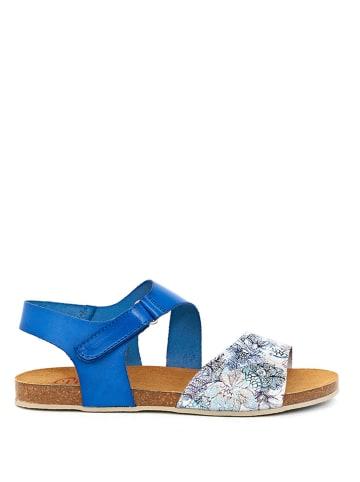 Abril Flowers Leder-Sandalen in Blau/ Bunt