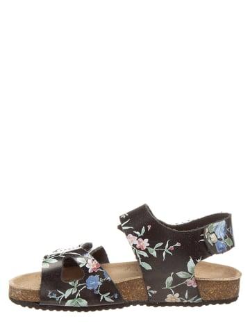 """KAVAT Leren sandalen """"Bomhus XC"""" zwart/meerkleurig"""