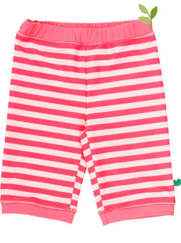 Fred´s World by GREEN COTTON Badehose in Rot/ Rosa