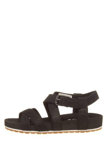 Timberland Leren sandalen zwart