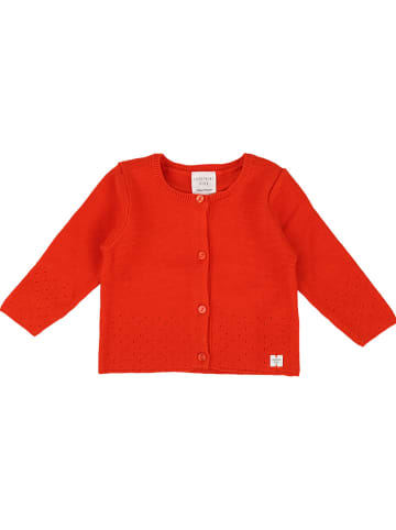 Carrément beau Cardigan in Rot