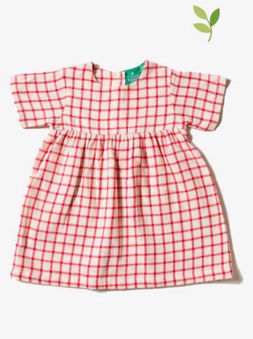 Little Green Radicals Sukienka w kolorze czewono-białym