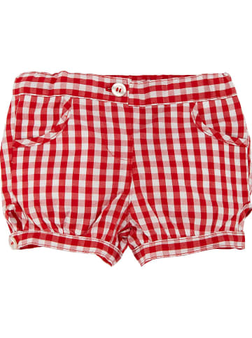 Chicco Short rood/wit