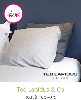 Ted Lapidus & Co