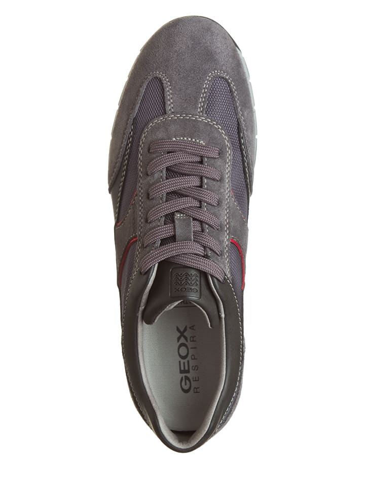 """Geox Sneakers """"Active A"""" in Grau"""