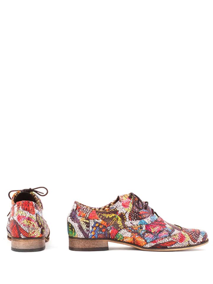 Zapato Leder-Schnürschuhe in Bunt