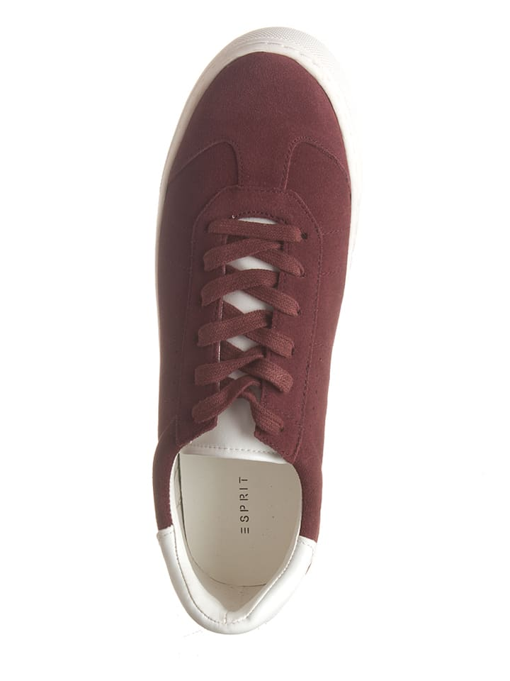 "ESPRIT Leder-Sneakers ""Crosty LU"" in Bordeaux"