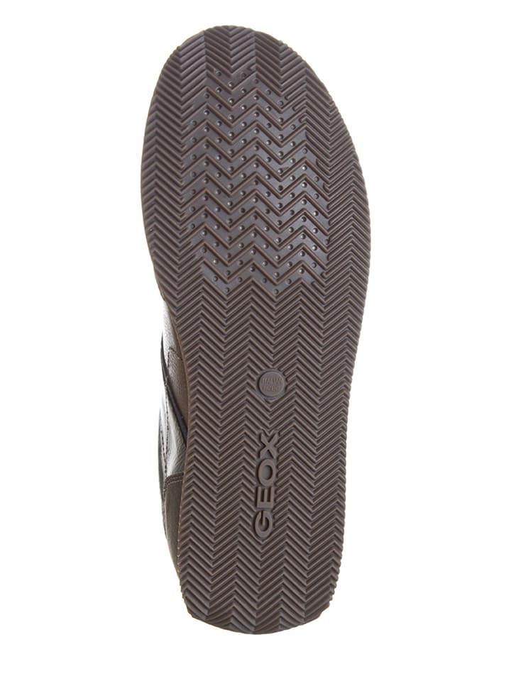 Geox Sneakers Dassel in Braun/ Taupe