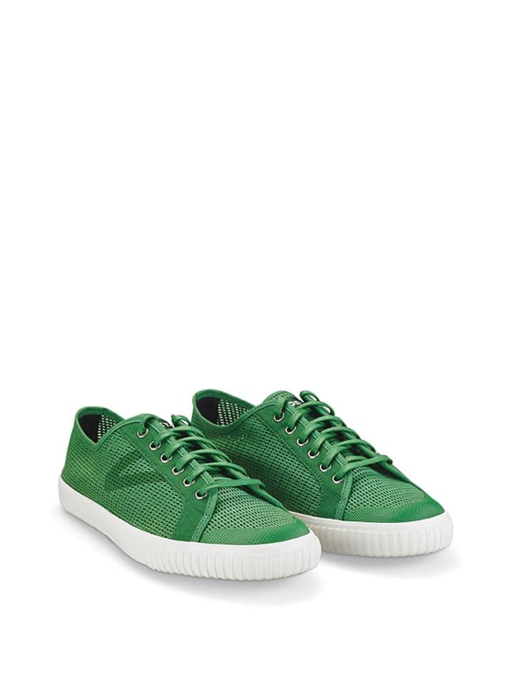Tretorn Sneakers in Grün - 42% 06MlF
