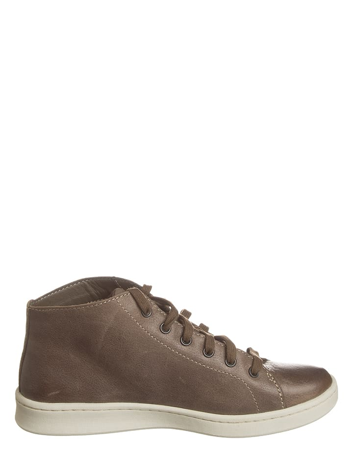 "Timberland Leder-Sneakers ""Dashiell"" in Braun"