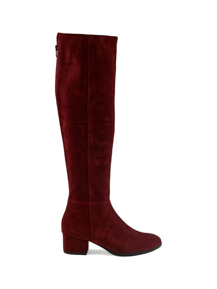 Zapato Leder-Stiefel in Bordeaux - 61%