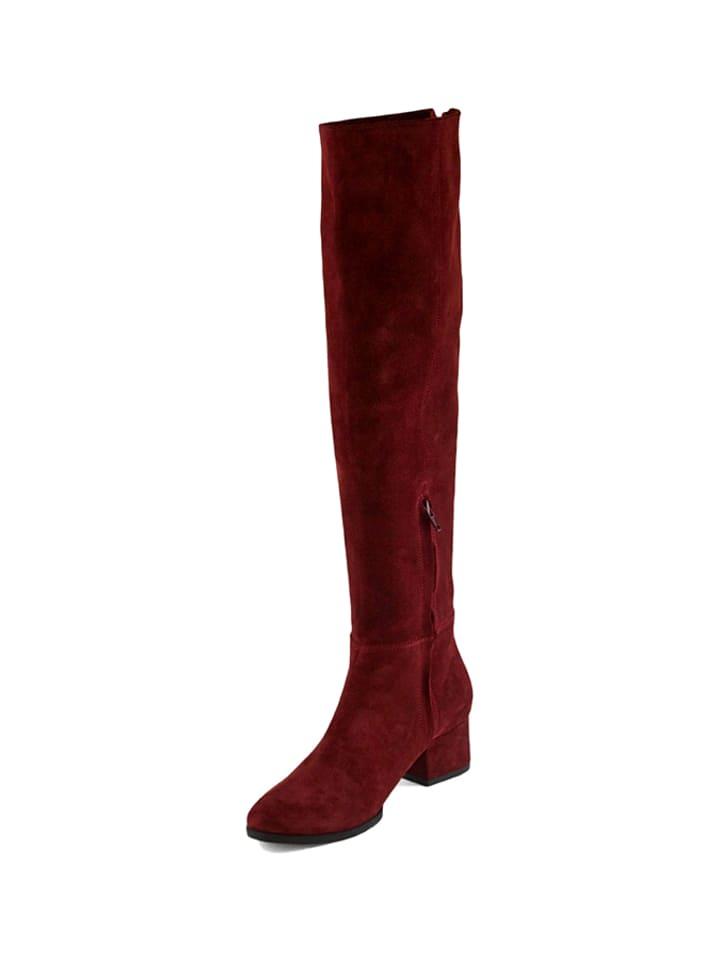 Zapato Leder-Stiefel in Bordeaux - 61% MiZFr