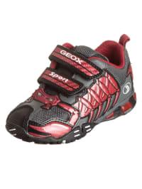 "Geox Sneakers ""Eclipse"" in Grau/ Rot"