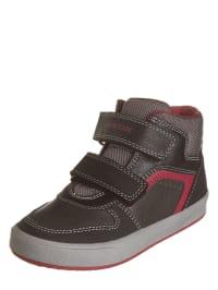 Geox Sneakers Gisli in Beige - 59% Y8BblkC